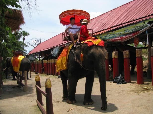 Turyści wyruszający na zwiedzanie Ayutthayi